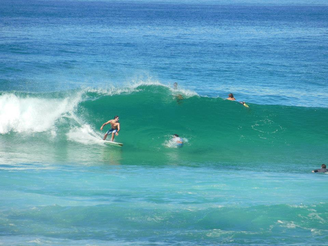 gus-surfing